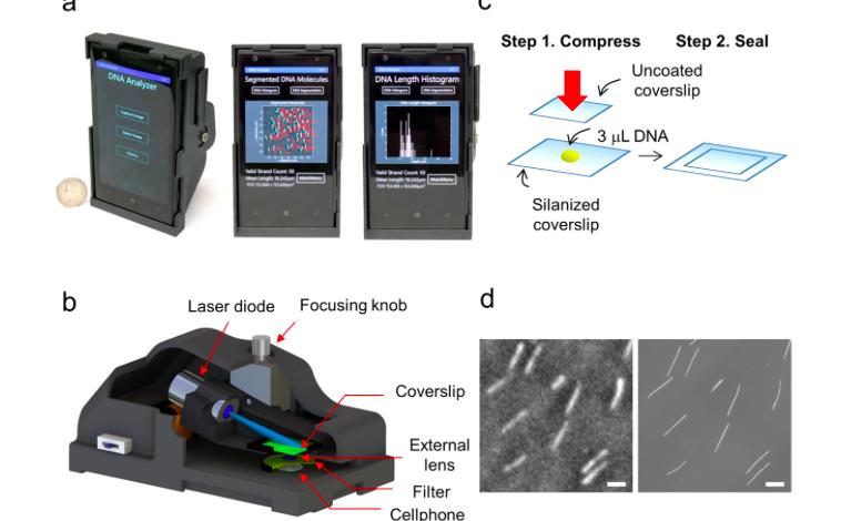 Photo of Smartphone trasformato in un analizzatore di DNA attraverso la stampa 3D