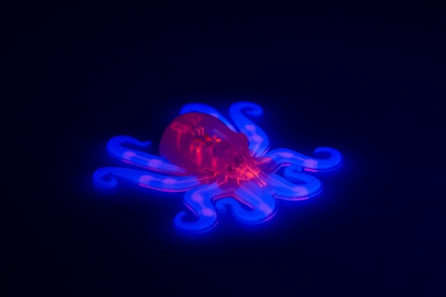 2016_RT_MW_Octobot_002-640x427