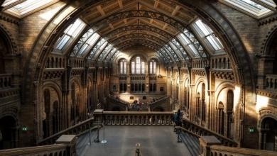 Photo of La stampa 3D avrà un ruolo nella decolonizzazione dei musei?
