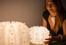 Photo of Intervista a Serena Fanara, quando la stampa 3D è al servizio della creatività