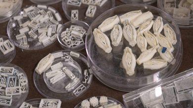 Photo of I ricercatori della Rice University stampano in 3D vasi sanguigni usando zucchero e laser