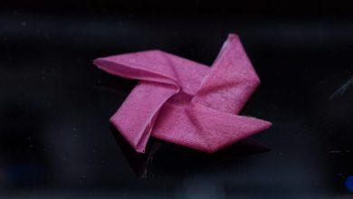 Photo of Harvard sviluppa tessuti stampati in 3D a base di cheratina che cambiano forma