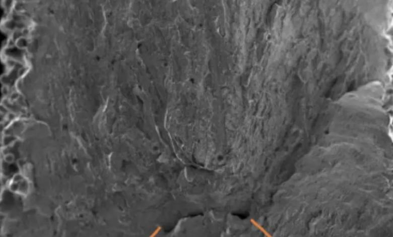 Photo of Uno studio mostra che la polvere di titanio AM può essere riutilizzata fino a 30 volte nell'EBM