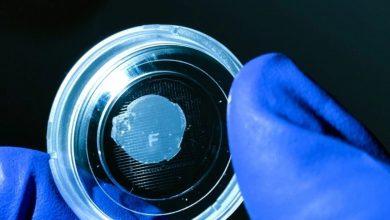 Photo of Fluicell promuove la piattaforma Biopixlar per il bioprinting terapeutico