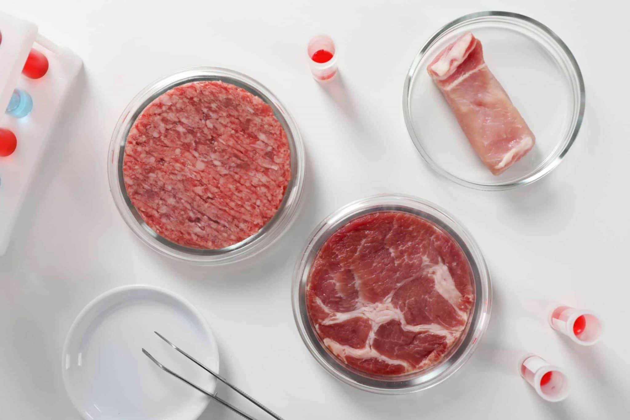 Patxi Larumbe, direttore commerciale diCocuus System Ibérica, ha mostrato l'immagine di una bistecca biostampata in 3D da 10 kg dall'azienda